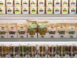 Selection of Ficacci olive products